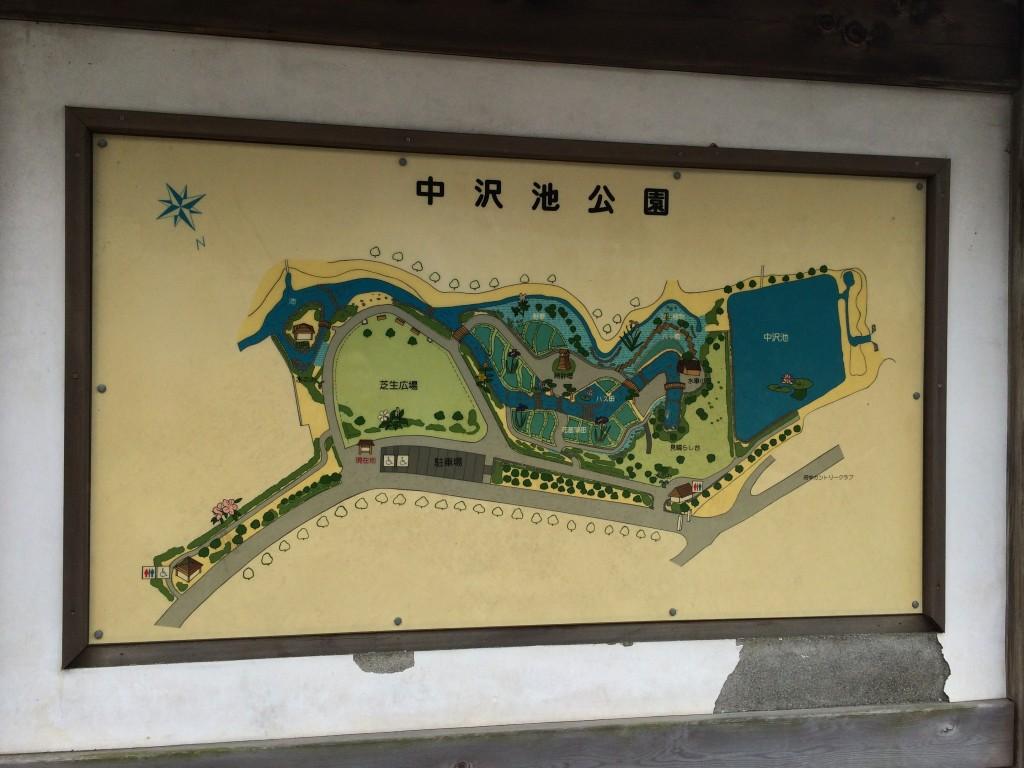 中沢池公園